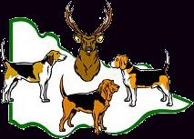 Victorian Hound Hunters (Inc)